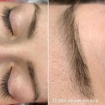 Пудровым бровям 1 год и 4 месяца   Фото   Видео   Хабаровск