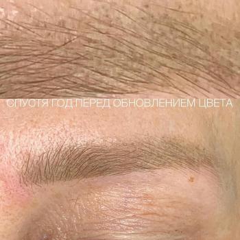 Пудровым бровям больше 1 года в деликатном возрасте | Хабаровск